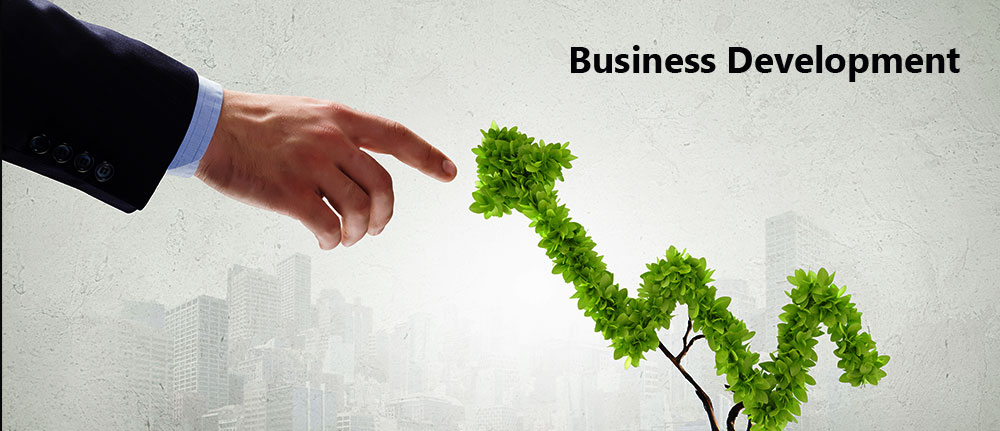 business-development-vigilare